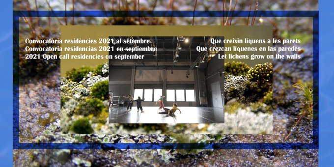 Let lichens grow on the walls – 2021 Open call residencies on september - Graner